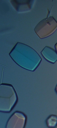 Some protein crystals